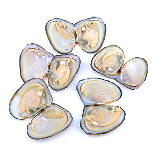 Aiohdg 7-8MM oesters met parel Vacuüm Pakket Parel Oester parel ketting, 10 Stks