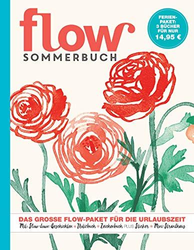 Flow Ferienbuch Band 7