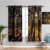 Cortina de ventana negra con luces de rayos de sol que brillan a través de los árboles en verano, bosque, vista al campo, mantener un buen sueño, naranja y marrón