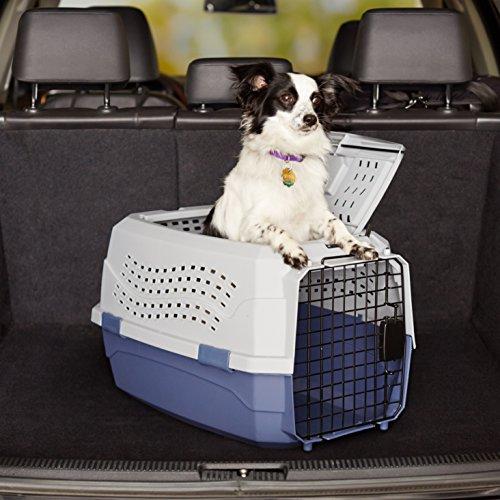 AmazonBasics Transportbox für Haustiere - 11