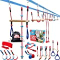 Double Ninja Slackline Obstacle Course for Kids - 80 Foot Line - Monkey Bars Playground Equipment - Ninja Warrior Course with Monkey Bars for Kids - (Deluxe Edition) - Patented Double Line Design from Lillian Imports