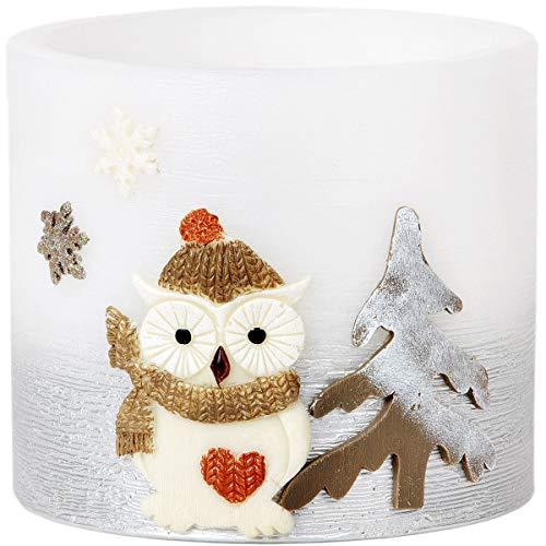 Adpal Kerzenmanufaktur Lampion Ovale tè Luce 15x 15cm di Natale Candela Gufo Motivo Cappello Argento Bianco Candela