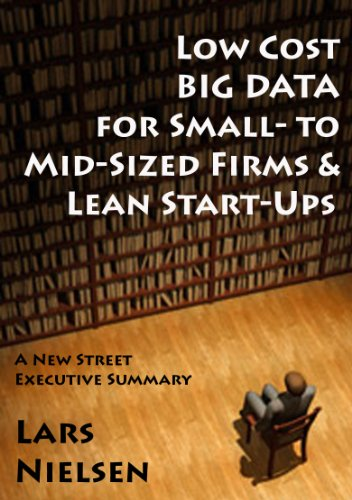 Low Cost BIG DATA For Small- to Mid-Sized Firms and Lean Start-Ups (New Street Executive Summaries Book 1) (English Edition)
