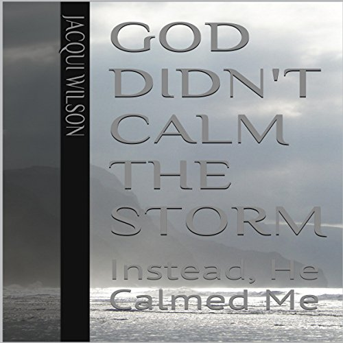 God Didn't Calm the Storm audiobook cover art