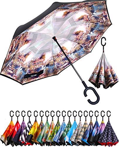 BAGAIL doppellagiger Regenschirm umgekehrt klappbar Regenschirm winddicht UV-Schutz groß gerade Regenschirm für Auto Regen Outdoor mit C-förmigem Griff, Dream Home, One_Size