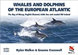 Buy Whales & Dolphins of the European Atlantic (Ocean Guides) from Amazon