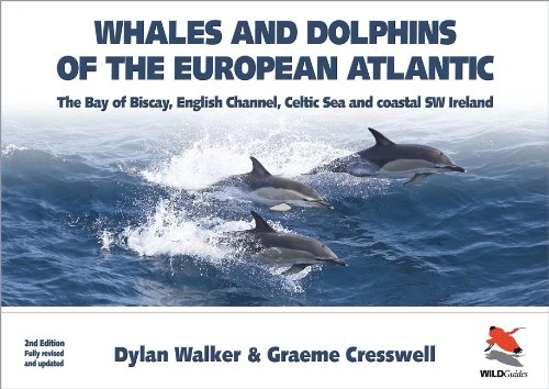 Whales and Dolphins of the European Atlantic: The Bay of Biscay, English Channel, Celtic Sea, and Coastal Southwest Ireland - Fully Updated Second Edition (Britain's Wildlife)