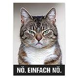 younikat Katzenposter Nö. Einfach nö. I Print Plakat in