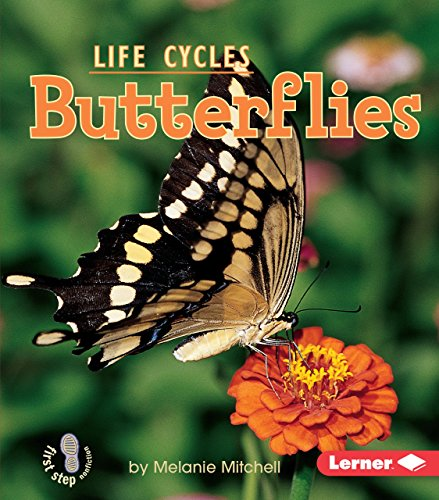 Butterflies (First Step Nonfiction ― Animal Life Cycles)