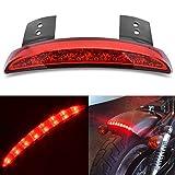 Luz trasera Katur para moto, luz de freno, para el hueco del guardabarros, de cristal templado, con 8LEDs, roja, para Harley