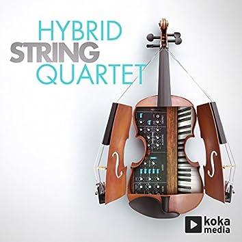 Hybrid String Quartet