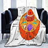 SINOVAL Ultra Soft Fleece Throw Blanket Plant Animal Cell Anatomy Diagram Structure All Education Science Part Mitochondria Human Physiology King (104' X 78') Warm Fuzzy Blankets