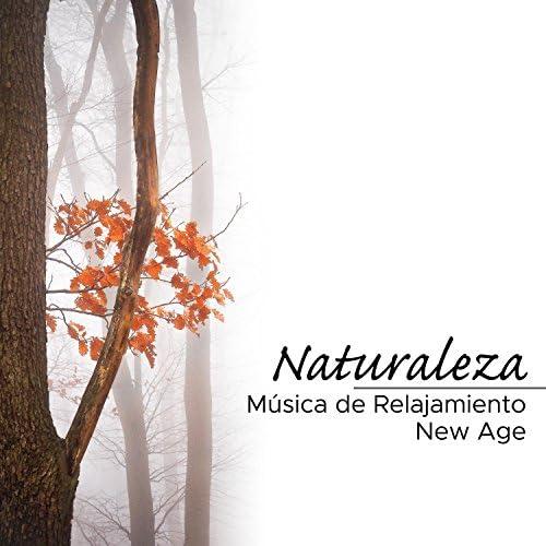 Sonidos de la Naturaleza Relajacion & Despertar Cómoda