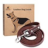 Best Leather Dog Leashes 2020 Reviews 19