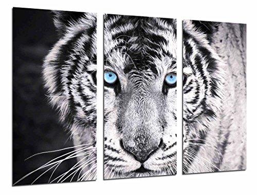 Cuadros Cámara Cuadro Fotográfico Tigre Blanco y Negro, Ojos Azules, Animales, 97 x 62 cm XXL, Multicolor