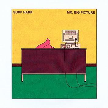Mr. Big Picture