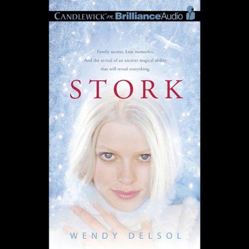 Stork audiobook cover art