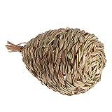 LIIYANN La Jaula del Huevo de la Hierba Natural del Nido de pájaro es Mejor Que la casa colgada Tejida del Loro el Calor de la Primavera