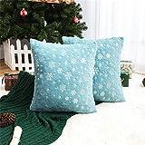 Top 10 Aqua Christmas Decors