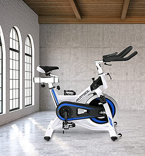 Murtisol Indoor Cycling Bike Belt Drive Exercise Bike, 48lbs Fly