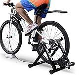 FLEXISPOT Vélo d'appartement en acier avec support magnétique et roue de réduction du bruit