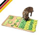 ALOY NATUR Schnüffelteppich für Hunde - fördert kognitive Entwicklung - Schnüffelmatte Hund - Hunde Beschäftigung - Schnüffelteppich Hund schadstofffrei - Schnüffelteppich Hund groß (100x60cm)