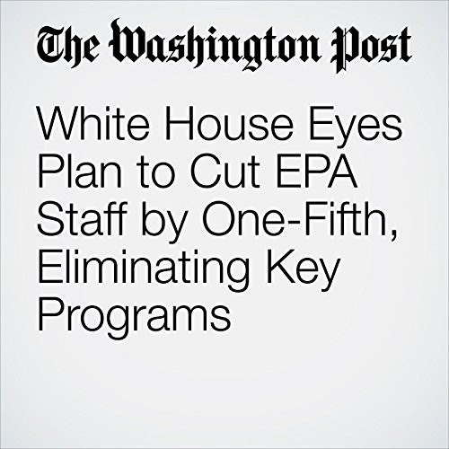 White House Eyes Plan to Cut EPA Staff by One-Fifth, Eliminating Key Programs copertina