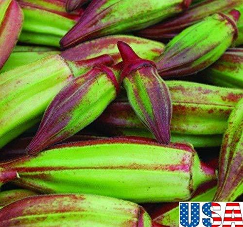 Portal Cool 50 Samen: Usa Verkäufer Alabama Red Okra 50-400Seeds Heirloom Nicht Gmo