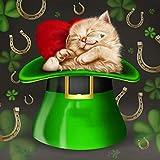 5D Diy Cristal Lindo Gato Diamante Bordado Animal Diamante Pintura En Forma de Diamante Mosaico Animal Magia Gato Decoración