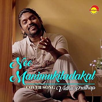 Nee Manimukiladakal (Recreated Version)
