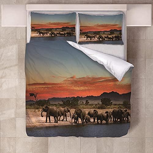 Fundas Nórdicas Cama Elefante de Camino 220 x 230Cm,con 2 Fundas de Almohada, Juego de Cama con Niñas con Cierre de Cremallera, Funda de Edredón de Microfibra Suave