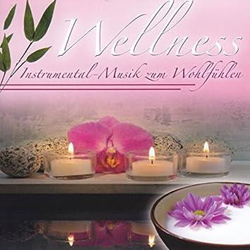Wellness - Instrumental-Musik zum Wohlfühlen, Vol. 2