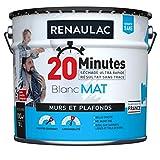 RENAULAC Peinture intérieur 2 en 1 murs et plafonds toutes pièces monocouche 20 Minutes - Blanc Mat - 10L - 100m²