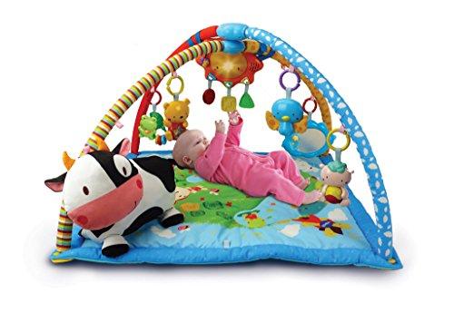 Imagen para VTech Mantita de juego cantarín 2 en 1, manta y gimnasio de aprendizaje para bebé con más de 40 canciones, frases y melodías, panel extraíble, multicolor (80-146422)
