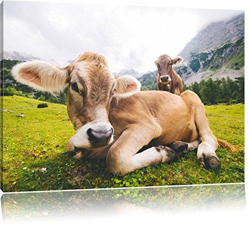 Almkuh in den Bergen, Format: 60x40 auf Leinwand, XXL riesige Bilder fertig gerahmt mit Keilrahmen, Kunstdruck auf Wandbild mit Rahmen, günstiger als Gemälde oder Ölbild,...