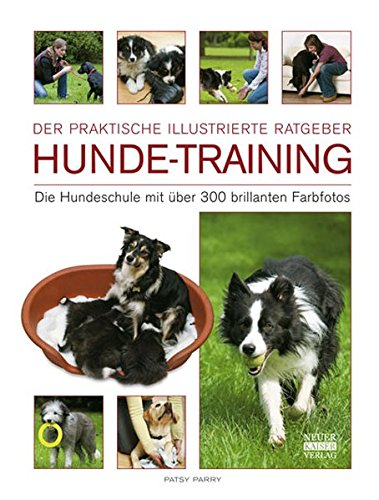Hunde-Training: Die Hundeschule mit über 300 brillanten Farbfotos: Die Hundeschulen mit über 300 brillianten Farbfotos