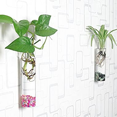 Siyaglass Pack of 2 Crystal Glass Wall Hanging Flower Vase Planter Terrarium Container Flower Pot Cylinder Shape