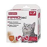 BEAPHAR – FIPROTEC 50 mg – Solution spot-on au Fipronil pour chats ( 1 kg) – Traite les infestations par les puces – Tue les tiques présentes sur le chat en 48 h – 4 pipettes de 0,5 ml