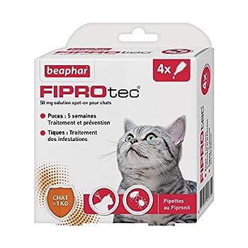 BEAPHAR – FIPROTEC 50 mg – Solution spot-on au Fipronil pour chats (> 1 kg) – Traite les infestations par les puces – Tue les tiques présentes sur le chat en 48 h – 4 pipettes de 0,5 ml