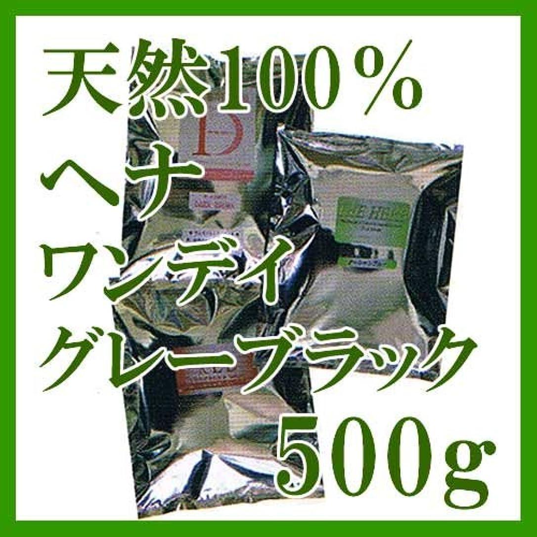 上がる打ち負かす発症ヘナ インターナショナル 天然100%ヘナ ワンデイグレーブラック 500g