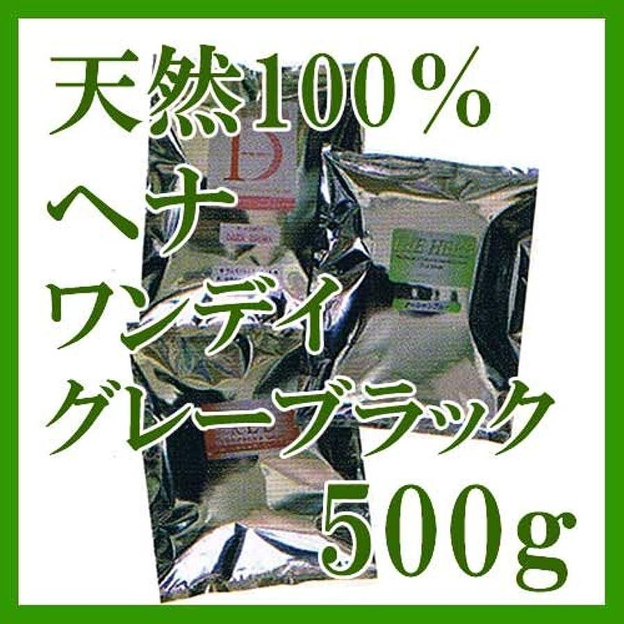 洞察力のある水平受取人ヘナ インターナショナル 天然100%ヘナ ワンデイグレーブラック 500g