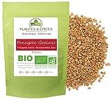 Plantes & Epices - Fenugrec en Graines du Maroc Qualité BIO - Sachet Fraîcheur Biodégradable Refermable (100g)