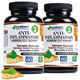 (Pack of 2 Value) Natural Advanced Anti-Inflammatory Pain Support by Ecostream Naturals for Joints, Swelling and Stiffness with Turmeric, Curcumin, Enzymes and Boswellia - Vegetarian