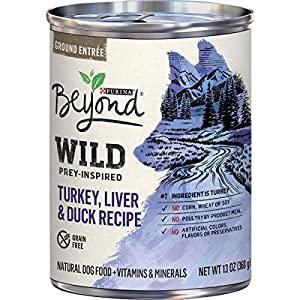 Purina Beyond High Protein, Grain Free, Natural Pate Wet Dog Food, WILD Turkey, Liver & Duck Recipe – (12) 13 oz. Cans