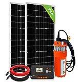 DCHOUSE 2pcs 100 vatios panel solar policristalino con bomba de pozo sumergible de 24V y kits de montaje para fuente de agua
