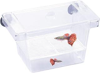 Scatola Di Isolamento Per Pesci Allevamento Di Pesci Per Acquario Scatola Per Incubatoio Doppio Strato Guppies Contenitore Di Incubazione Contenitore Per Strumento Per Piccoli Pesci Size : M