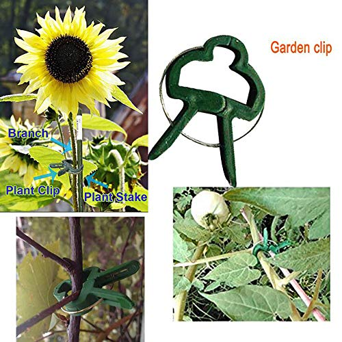 40 Garden Tool Sets, Garden Grafting Tools, Plant Clips, Garden Fish Bones, And Garden Clips, Can Be Used To Fix Tomatoes and Other Plants