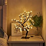 "PEIDUO 17.7"" Lighted Cherry Blossom Tree 48 Warm White Lights Plug in Adapter Light up Bonsai Tree for Home Bedroom Wedding Office Tabletop Tree Indoor Night Light Artificial Plants"