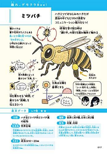 超図解ぬまがさワタリのふしぎな昆虫大研究