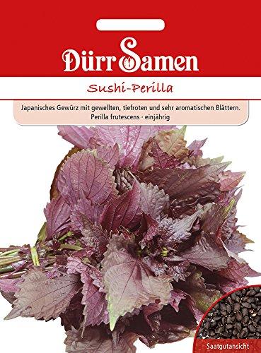 Sushi-Perilla | Sushi-Perillasamen von Dürr-Samen